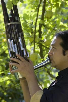 Parkmusik, Trombacher Hof, Bad Münster am Stein, 24.-25. August 2007