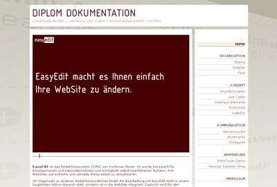 Diplom. Thema CMS, Bearbeitung bis November 2008