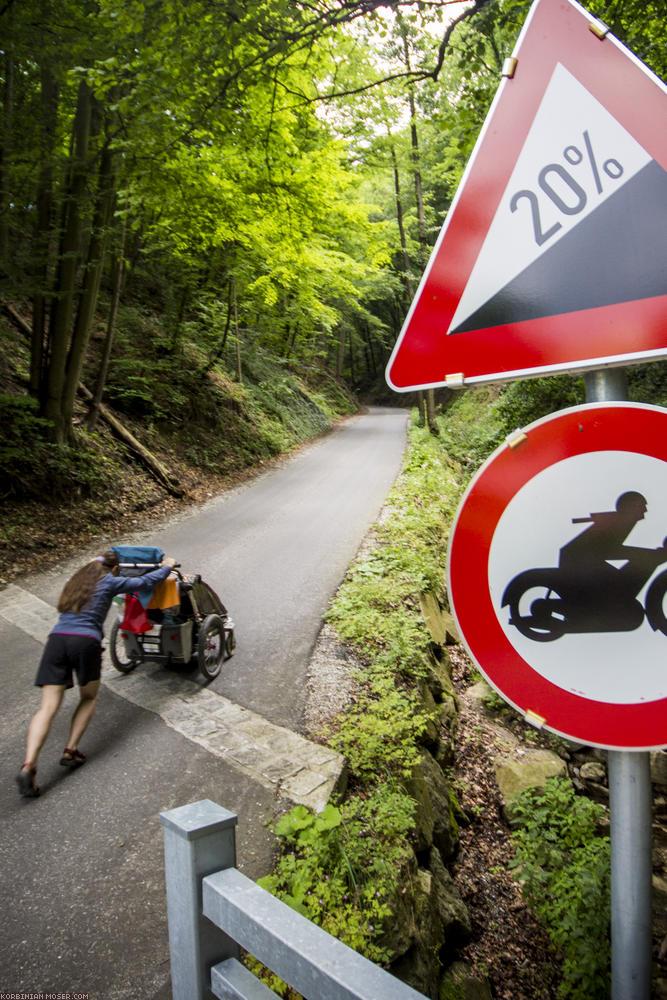 World Heritage Trail. Wachau-hike in July 2013
